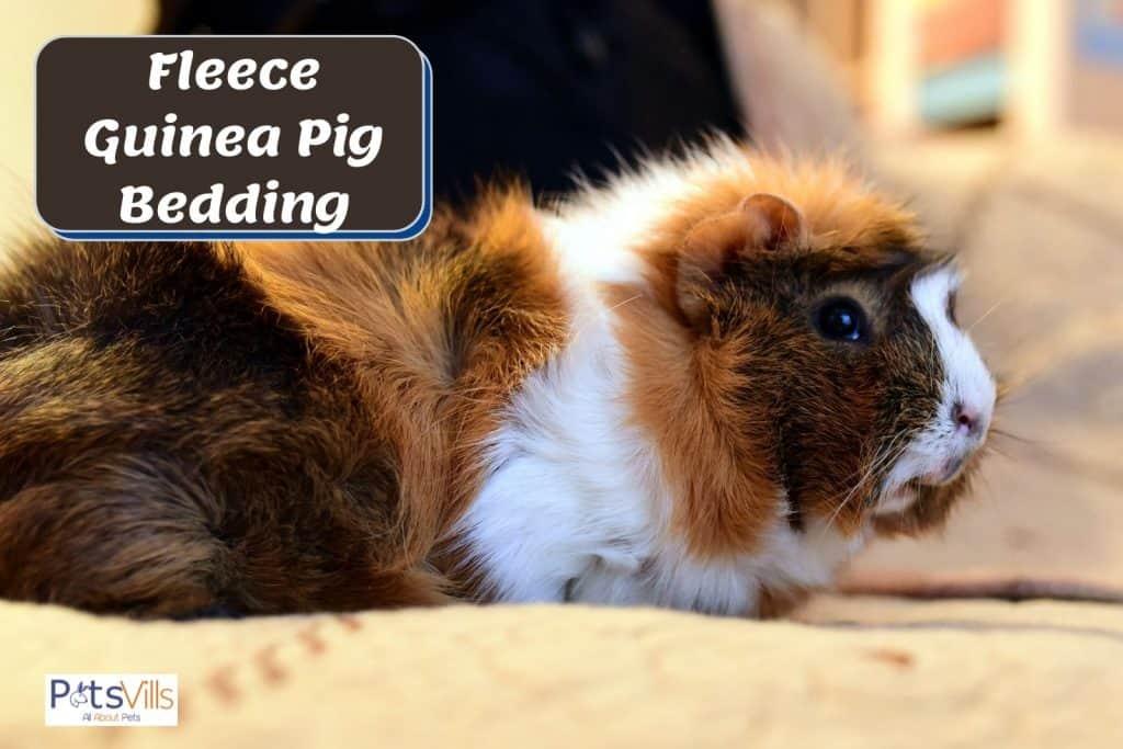 fleece guinea pig liner