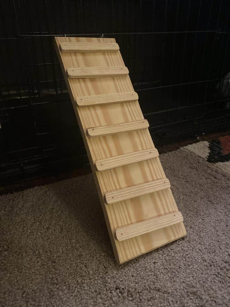 wooden guinea pig ramp