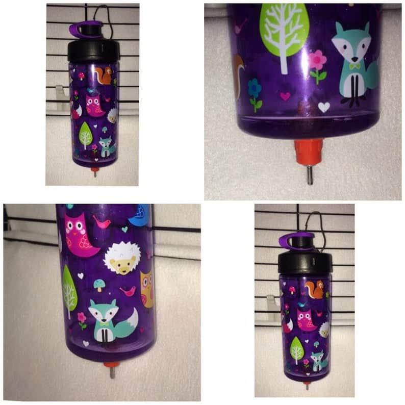 a very cute purple sugar glider water bottle