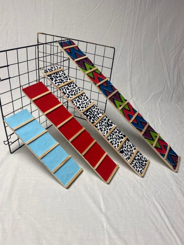 different styles of guinea pig ramp: color blue, red, animal printed and spiral