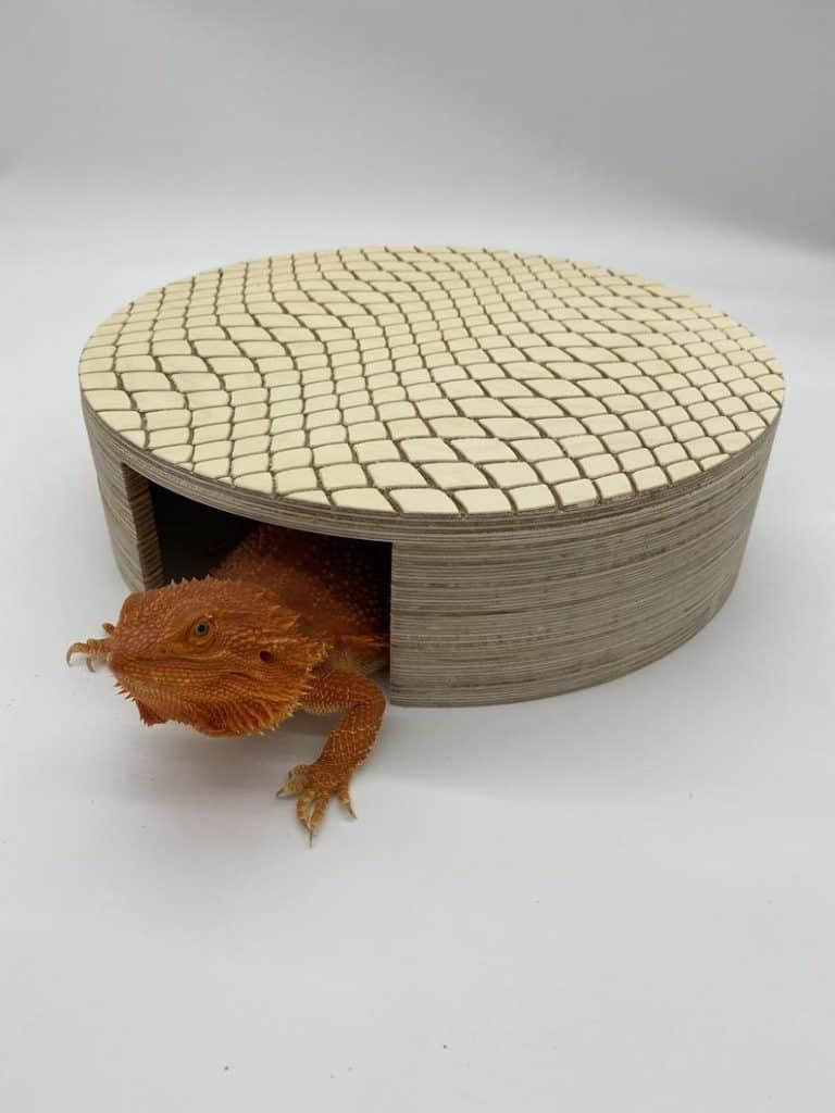 reptile hide cave