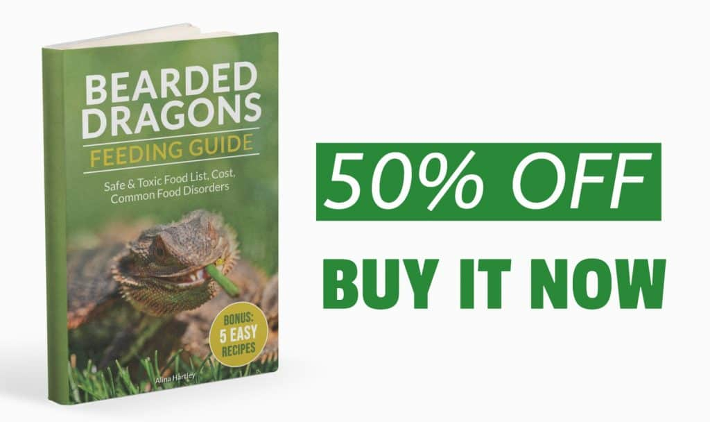 Bearded Dragon Feeding Guide: Safe & Toxic Food list, Cost, Common Food Disorders introductory offer