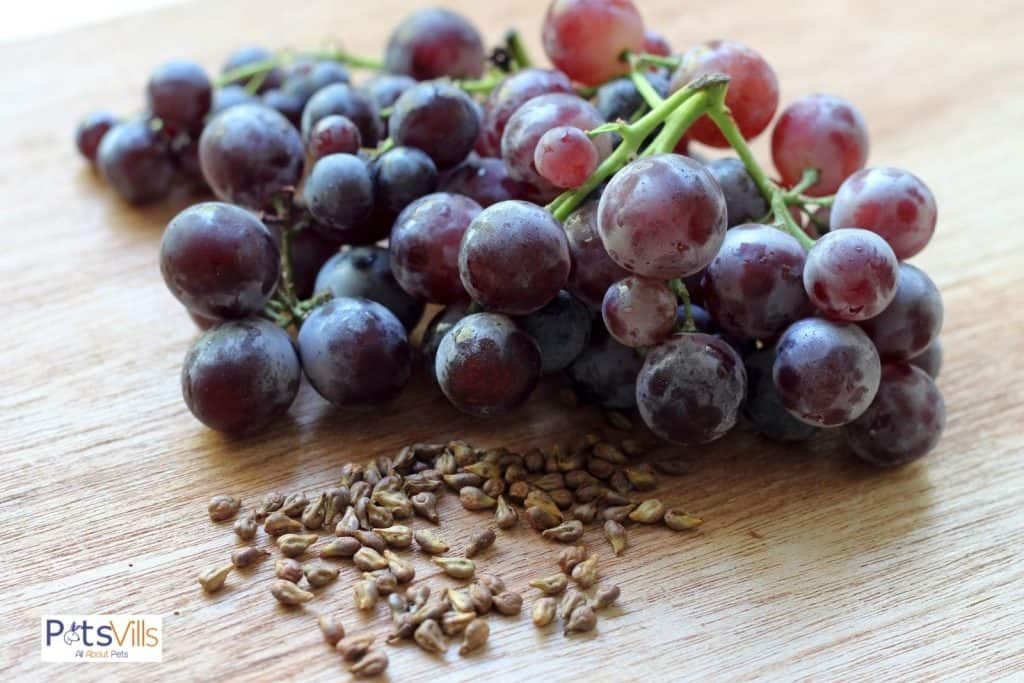 grapes and grape seeds on a wooden table