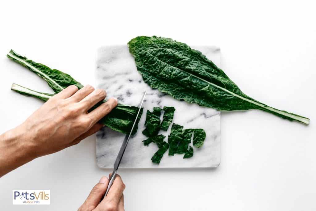 a man chopping kales