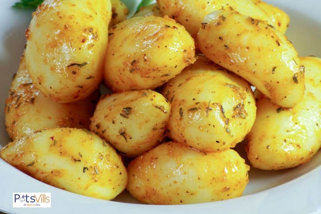 baked potatoes in a plate