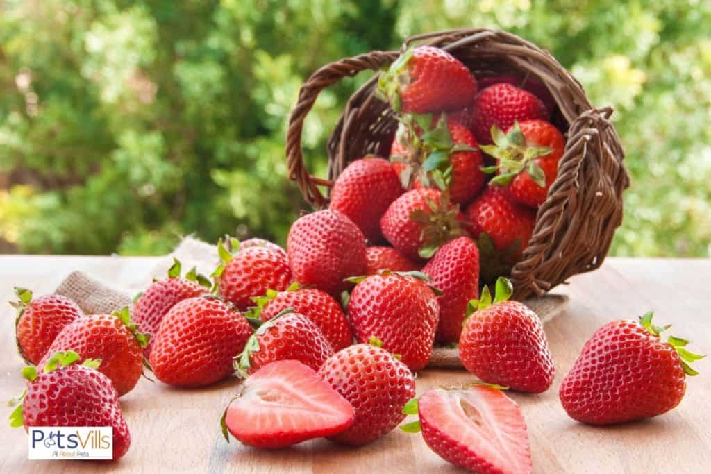 fresh strawberries from a wooden basket