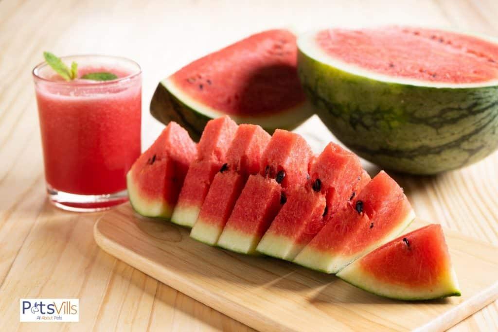 fresh slice of watermelon and watermelon shake