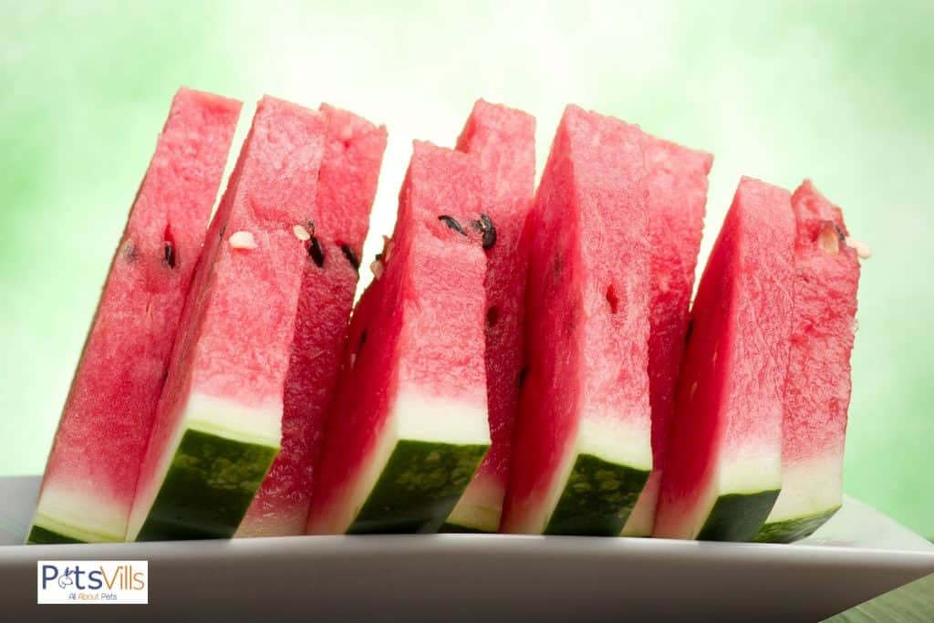 slices of watermelon in a white plate
