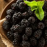 fresh blackberries on a wooden bowl: can bearded dragons eat blackberries?