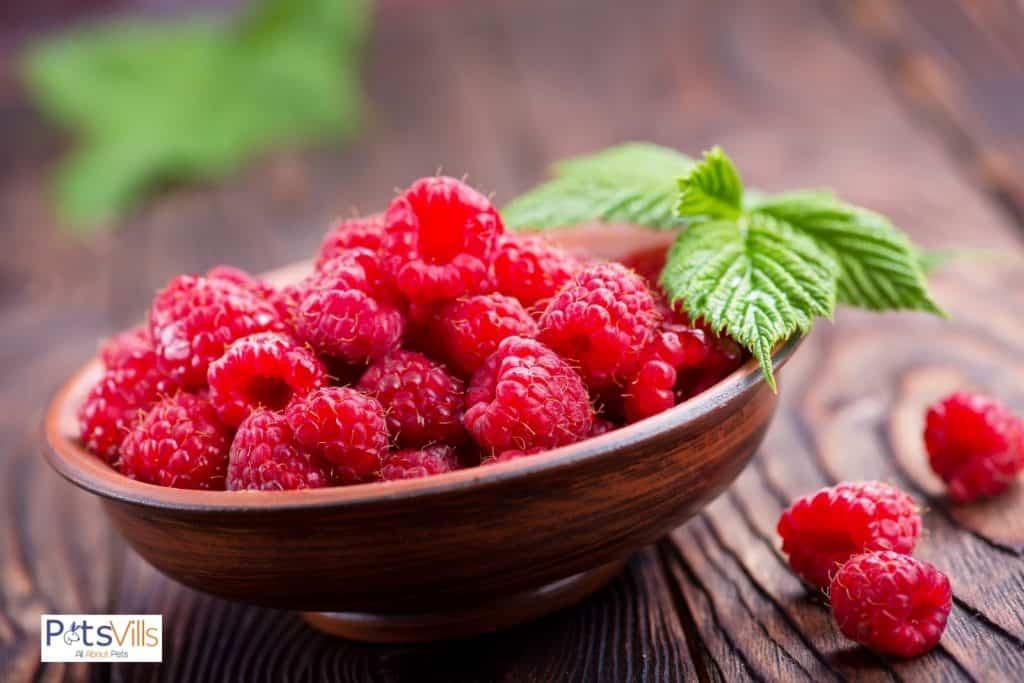 fresh raspberries on a wooden bowl