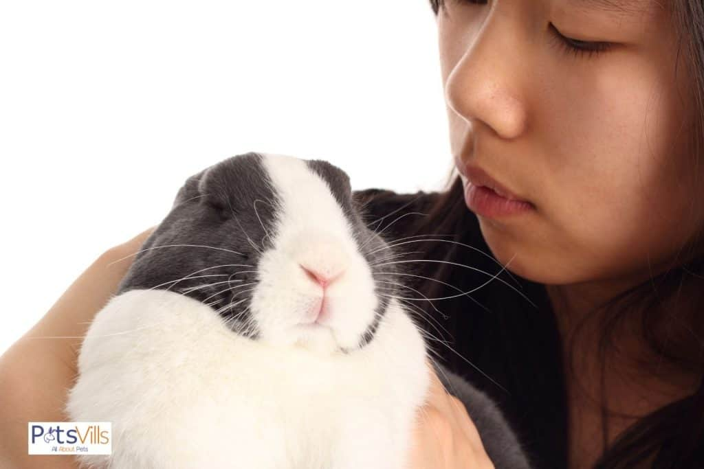 a women trying to be friendly with the dutch rabbit