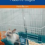 Do you want to know how to clean rabbits' cages properly? Take a look at this guide and find out tips and tricks to prevent your pet's cage from foul odors!