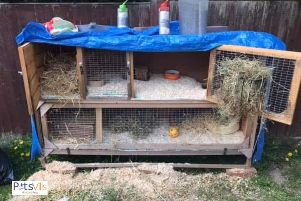 a rabbit cage to clean, weekly rabbit cage cleaning