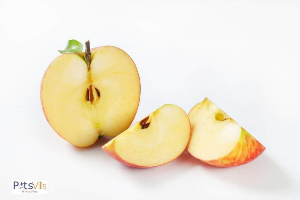 an apple cut in half